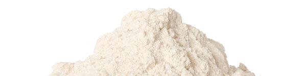 Special malt flour